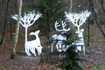 Center Parcs Sherwood Forest - Countdown to Christmas