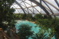 Subtropical swimming paradise at Center Parcs