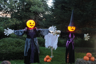 Halloween witch lights at West Midlands Safari Park - Spooky Spectacular