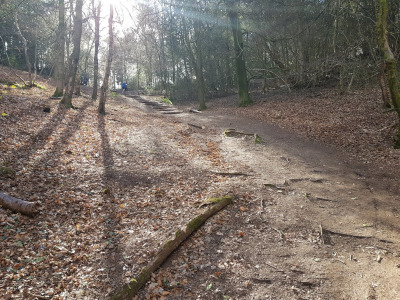 Walk in Worcestershire - Barnt Green Lickey Hills Circular Walk - Uphill towards Lickey Hills