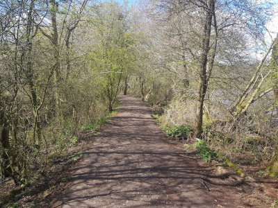 Walk in Worcestershire - Earlswood Lakes
